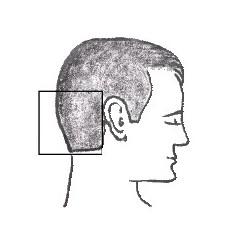 Analiza makro i mikro elementów we włosach