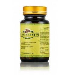Reishi - Ganoderma lucidum - 100% rozłupane i sproszkowane zarodniki - suplement diety